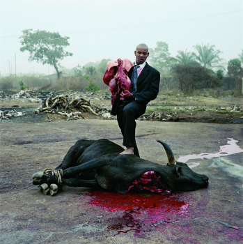 Exposition «This Must Be The Place», 2013 © Pieter Hugo