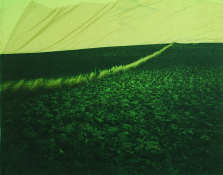 Exposition «La postérité du soleil», 2012 © Danilo Sartoni