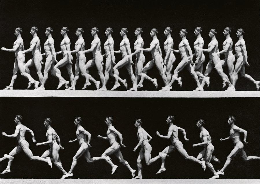 Etude de la marche, Etienne Jules Marey © Jacques Boyer / Roger-Viollet
