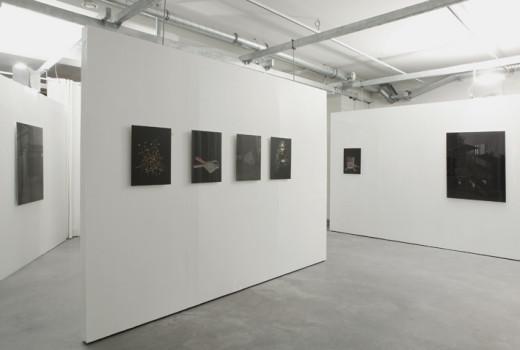 Exposition Aster de Nicole Hametner, 2009