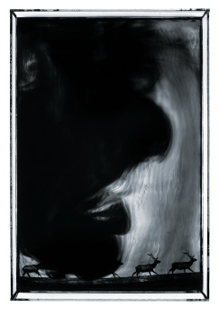 Les eaux, paysages rêvés paysages de l'ombre, 2011 © Benoît de Carpentier