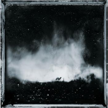« Les eaux, paysages de l'ombre », 2011 / 2014 © Benoît de Carpentier