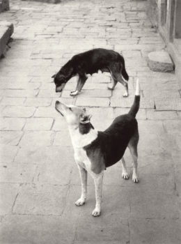 Swayambhunath, Népal, 1994 © Pentti Sammallahti